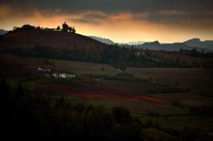 tramonto sulle vigne di Dogliani