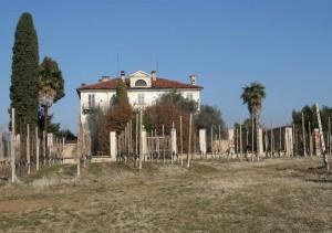villa Sella Lessona1