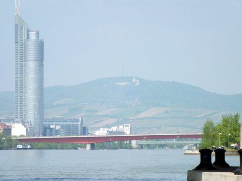 Vienna e le sue vigne, sullo sfondo, viste dalla Donauinsel