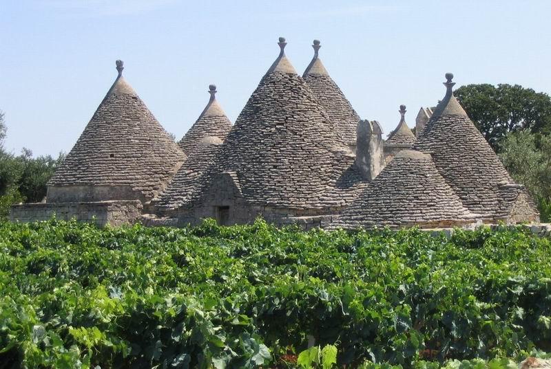 Puglia_ trulli e vigne