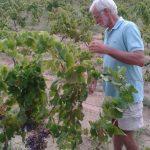 Serafino Addis nelle vigne di Li Duni
