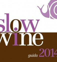 Slowine2014_Piatto-copia1-230x250