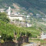 Strada del Vino della Valtellina
