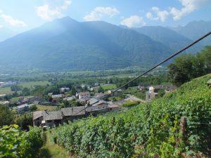 teleferica in vigna Valtellina