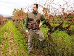 Leonardo Beconcini in vigna