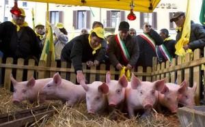 roma_maiali_davanti_a_montecitorio_coldiretti_salviamo_i_prosciutti_italian-0-0-383542