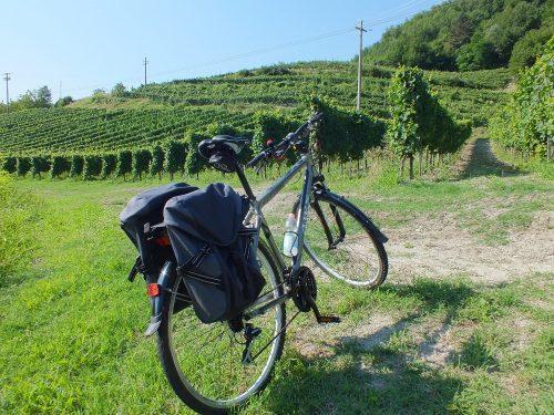 bici nelle vigne