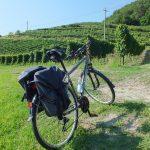 in bici nell'Oltrepò