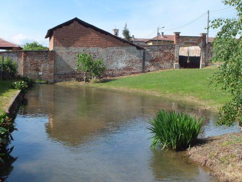 fontanile Dulzago
