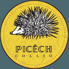 Picech_logo