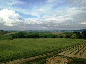 Panorama dal Canalicchio