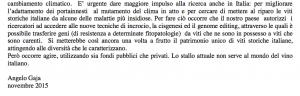 articolo-gaja