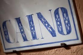 Caino_logo