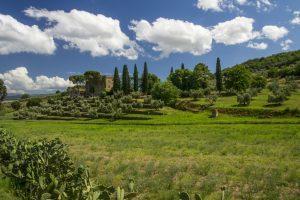 panorama Tenuta Eleonora di Toledo
