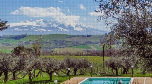 loreto aprutino agr olivuccia