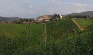 Vista su Rocca 2