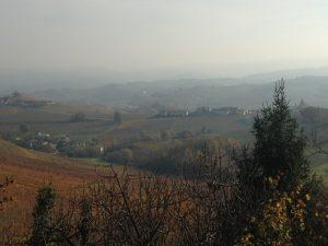barolo-brunello_8