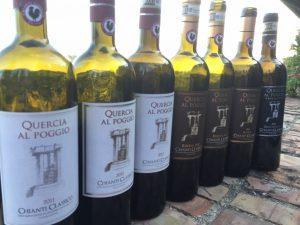 Quercia al Poggio_bottiglie