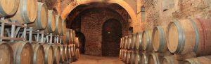cantina-del-castello_scorci