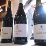 Pinot Nero Il Lago
