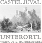 castel-juval_logo