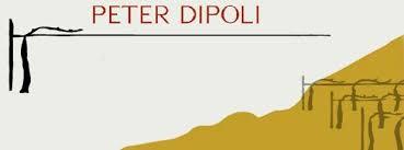 dipoli-logo