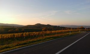 montalcino-skyline_1