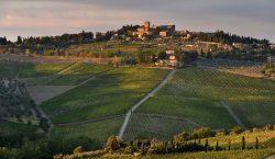 Panzano: bio distretto e coerenza per il Chianti Classico