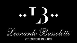 bussoletti-logo