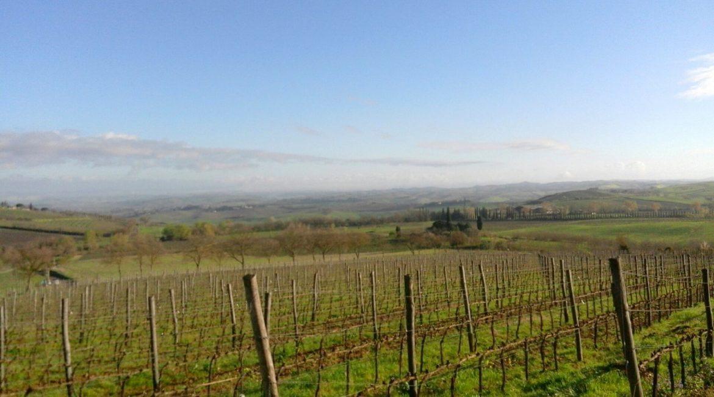 Brunello di Montalcino Riserva 2013: come una prova di forza – Parte seconda