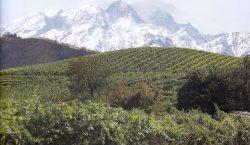 Taste Alto Piemonte, o del tempo ritrovato. Parte prima