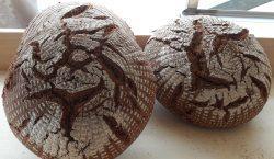 Panificatori Agricoli Urbani: anche il pane è open source