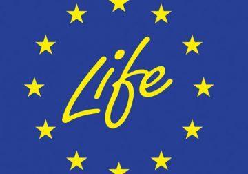 Il programma LIFE dell'Unione Europea: una spinta all'innovazione e alla sostenibilità