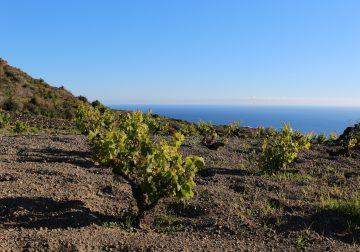 Pantelleria, isola del sublime/1