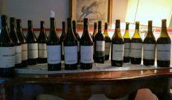 Elogio del vino trasparente. Verticale completa di Tenuta di Valgiano