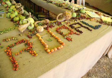 7-8 settembre a Lesignano De' Bagni (PR): Rural Festival