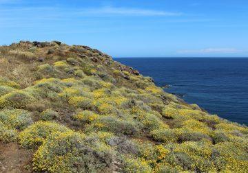 Pantelleria, isola del sublime/4