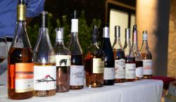 Dal Garda all'Etna, va in scena l'Italia del vino in…