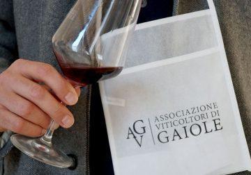 """19 ottobre a Gaiole in Chianti (SI) torna """"Terre di Gaiole"""""""