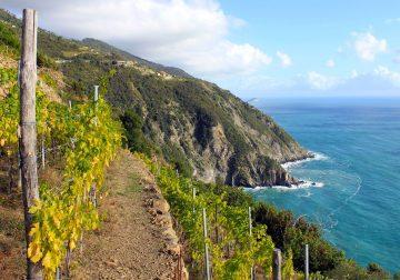 Cinque Terre: l'emozione di un trenino a cremagliera lungo la Costa de Sera. Vigne e vini di Campogrande