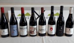 """""""Eccopinò"""", una occasione per parlare di Pinot Nero"""