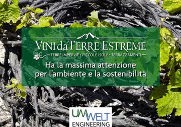 9-10 febbraio a Mogliano Veneto (TV): Vini da Terre Estreme