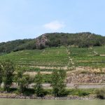 Un viaggio in Wachau. Territorio, vini e interpreti sulle sponde del Danubio/2