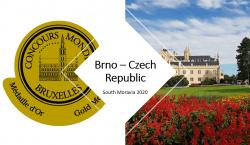 I vini della Moravia dal palco privilegiato del Concours Mondial…