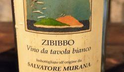 Salvatore Murana, Gadir 1991