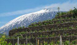 Etna, nuova divinità italica