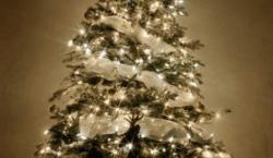 Buon Natale, felice anno nuovo. E un proposito per il…