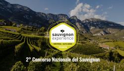 12 Sauvignon dell'Alto Adige da non perdere