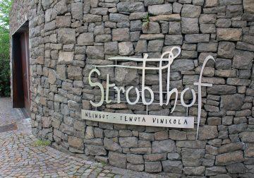I Pinot di Stroblhof, dal Bianco Strahler al Nero Pigeno e Riserva