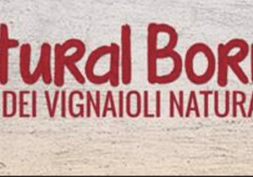 20-21 giugno: Natural Born Wines a Isola della Scala (VR)